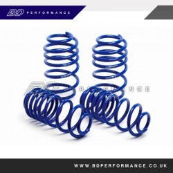 RS Mk3 H&R Lowering Springs